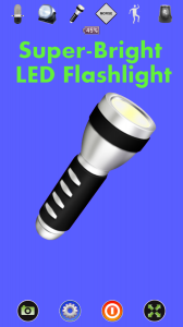Disco LightTM LED Flashlight