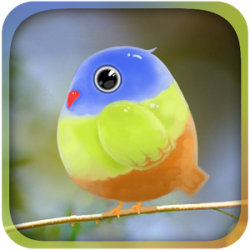 Cute Bird Live Wallpaper
