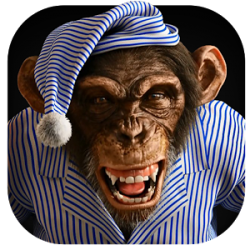 Angry Monkey 3D Live Wallpaper » Apk Thing - Android Apps
