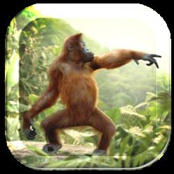 Dancing Monkey HD Live Wall