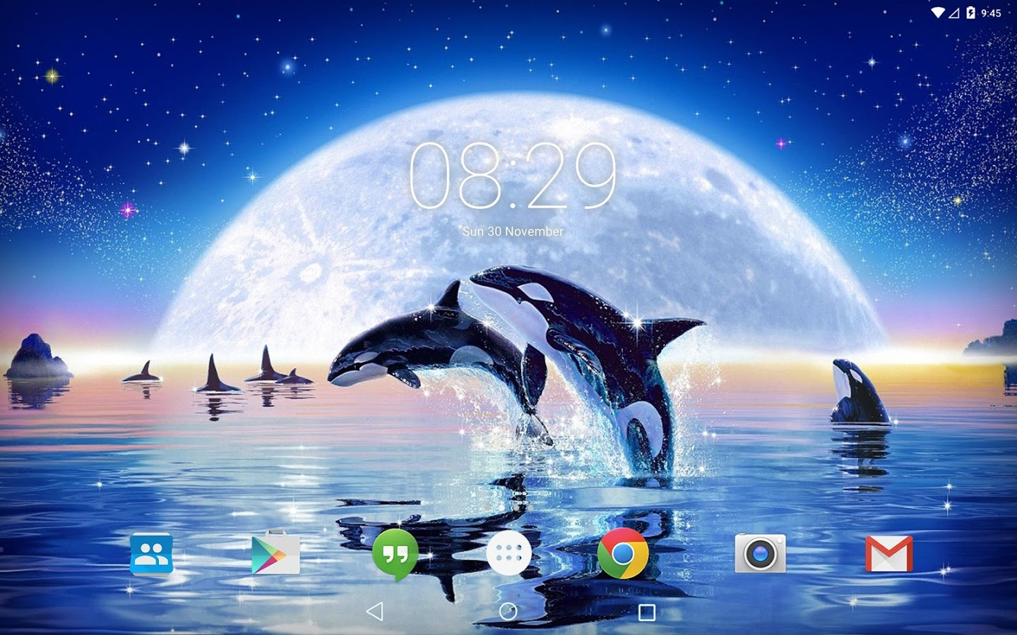 Ocean Dolphins Live Wallpaper Apk Thing Android Apps