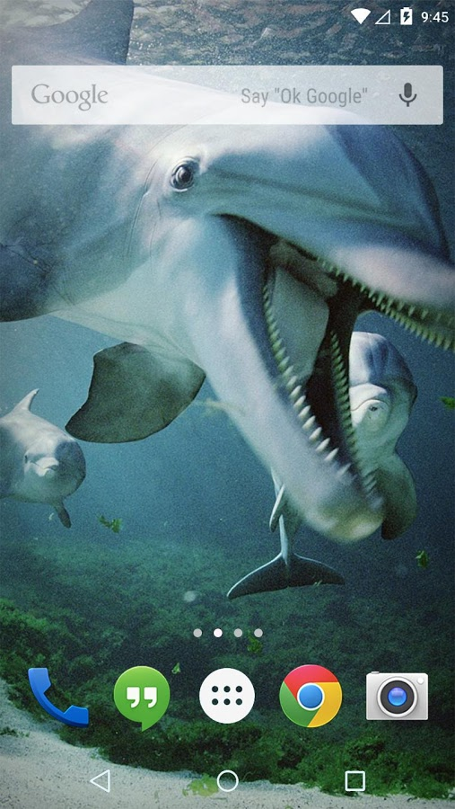 Ocean Dolphins Live Wallpaper Apk Thing Android Apps Free Download