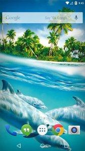 Ocean Dolphins Live Wallpaper
