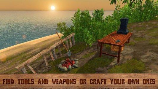 Pirate Island Survival 3D