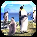 Arctic Penguin Live Wallpaper