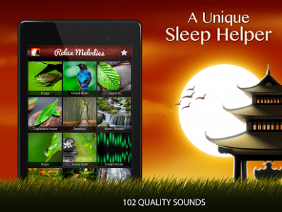 Relax Meditation: Sleep Sounds
