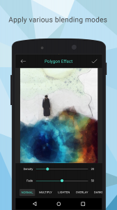 Polygon Effect - Low Poly Art