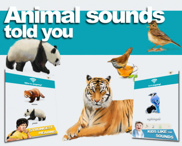 Animal sounds told you