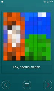 Cellfie: pixelate the world
